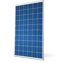 Conergy P-Series (PE 209-310W) Solar Panels