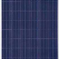 Conergy P-Series (PE 209-310W) Solar Panels