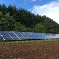 This 30kW ground-mounted array off-sets the energy needs of a beautiful Oregon vineyard!