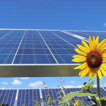 Pikes Peak Community Solar Garden